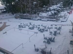 平成25年1月大雪①