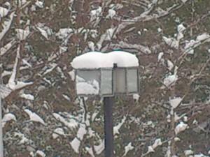 平成25年1月大雪②